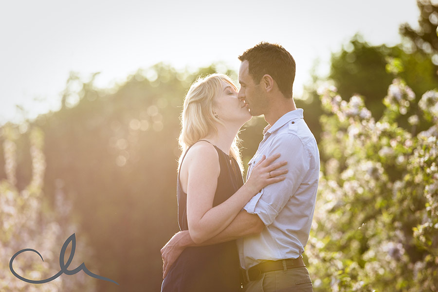 Apple and Cherry orchard in Hoaden engagement photos