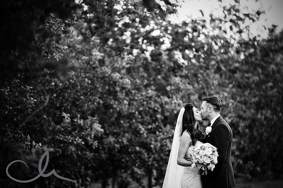 newlyweds have their portrait shoot at their La Mare Wine Estate Wedding