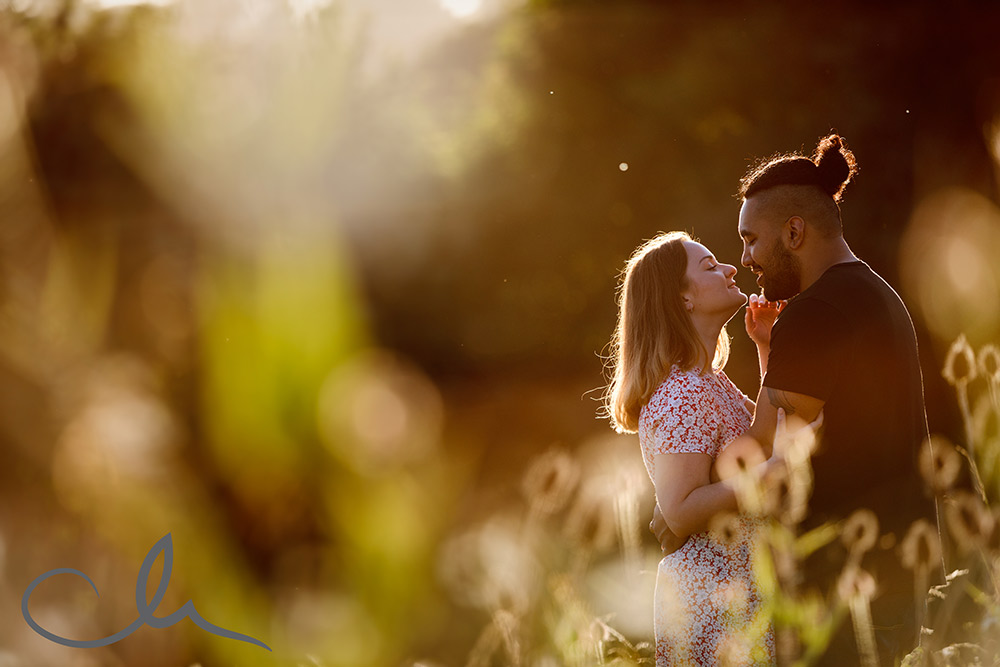 countryside engagment photographic session in golden light